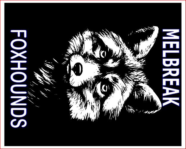 fox draft 2