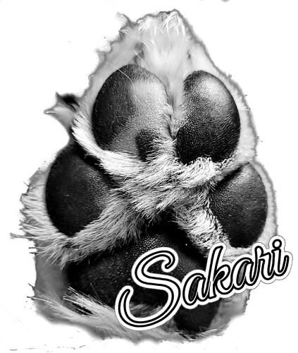 Sacar3
