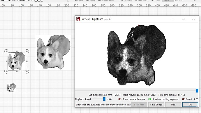 Pet photo preview at 4 cm size