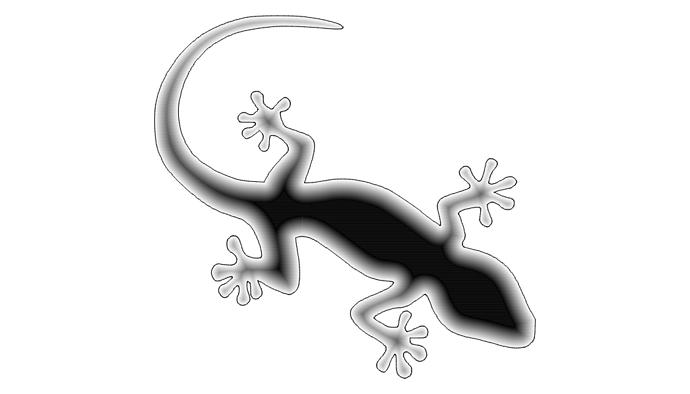 Test Ramp Lizard