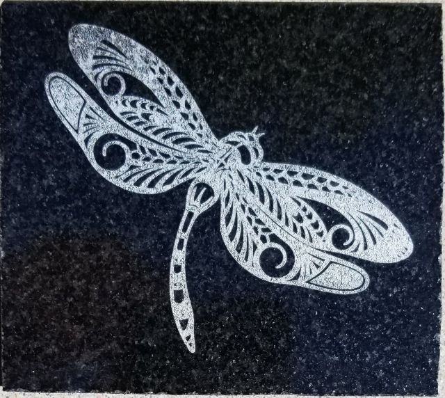 dragonfly%20on%20granite%20sm