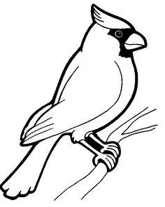 fågel 4