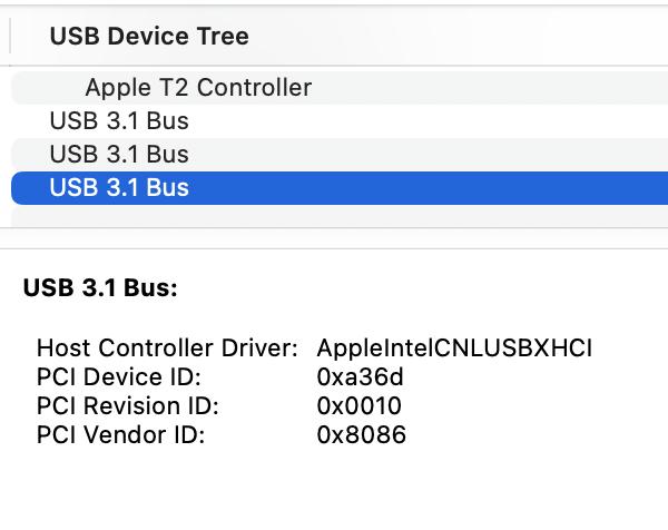 Bus #3